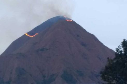 Bukit Anak Dara Terbakar, Pendakian Rinjani via Sembalun Masih Aman