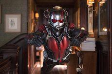 Ant-Man 3 Disebut Bakal Ramaikan Fase 4 MCU