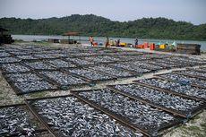 Siapa yang Tak Kenal Ikan Asin Lhok Seudu...