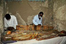 Taman Berusia 4.000 Tahun Ditemukan di Thebes, Mesir