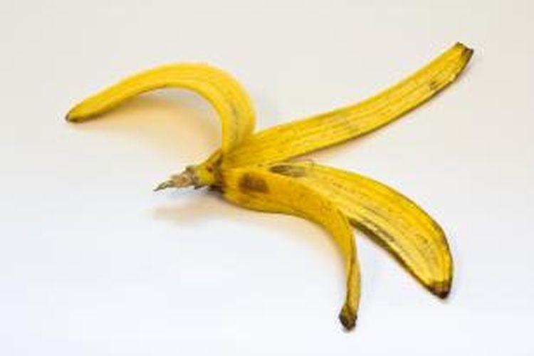 Anda hanya perlu menggosok-gosok kulit pisang tersebut dengan gerakan memutar pada peralatan perak. Setelah itu, bilas dengan air hangat. Kini, barang perak Anda dapat terlihat baru.