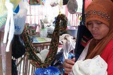 Tinggal di Bekas Kandang Ayam, Bayi 14 Hari Dikerubuti Semut Setiap Malam
