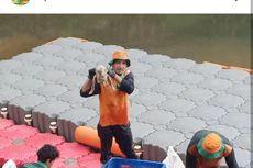 Jeroan Hewan Kurban Cemari Sungai, Petugas Temukan Kepala Sapi dan Kambing