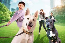 4 Fakta Menarik Film June & Kopi, Rilis Hari ini di Netflix