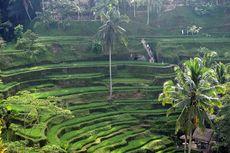 50 Resort Terbaik Dunia 2021 Versi Conde Nast Traveler, Salah Satunya di Bali