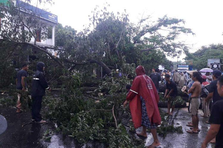 lokasi Pohon Tumbang yang mengakibatkan korban MO meninggal.