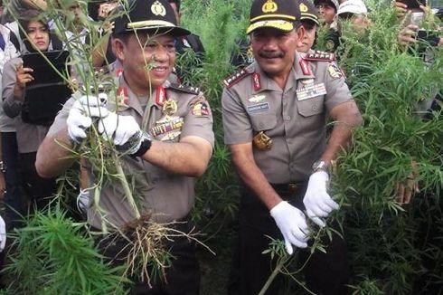 Polri Sediakan Helikopter untuk Pantau Ladang Ganja di Aceh