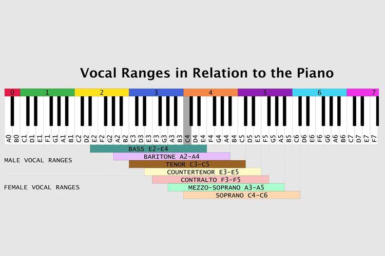 Tujuh jenis suara manusia
