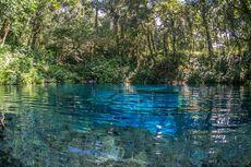Libur Lebaran, Objek Wisata di Kerinci Seblat Ditutup Sementara