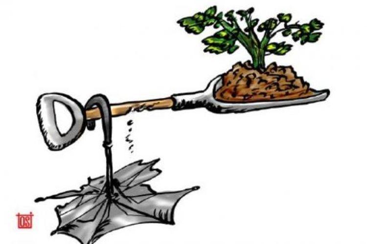 Ilustrasi Reforma Agraria