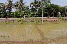 Banyak Pejabat dan Pengusaha yang Terlanjur Borong Tanah di Cilamaya
