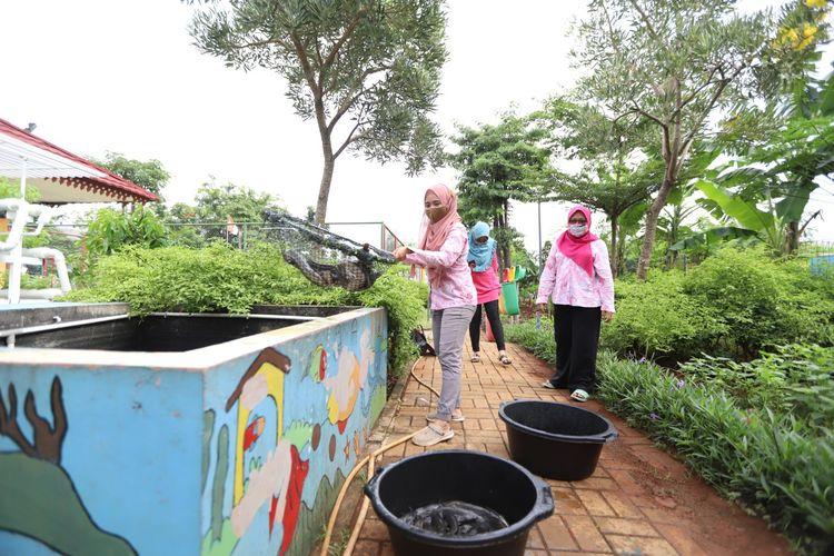 Ruang Publik Terpadu Ramah Anak (RPTRA) Sunter Muara, Jakarta Utara panen 50 kilogram ikan lele.