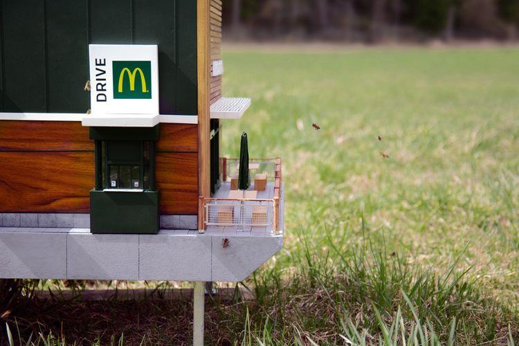 McHive, gerai McDonalds terkecil di dunia yang dikhususkan untuk lebah, Swedia.