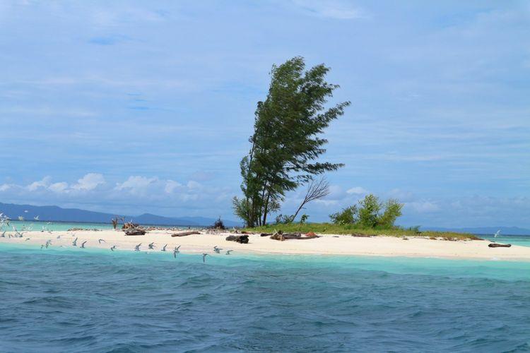 Keindahan pasir timbul Urun, Kampung Yansawai, Pulau Batanta, di kawasan Raja Ampat. Ketika air pasang daratan ini akan menjadi pulau tersendiri, sedangkan saat surut ia akan terlihat panjang menyatu dengan Pulau Batanta.