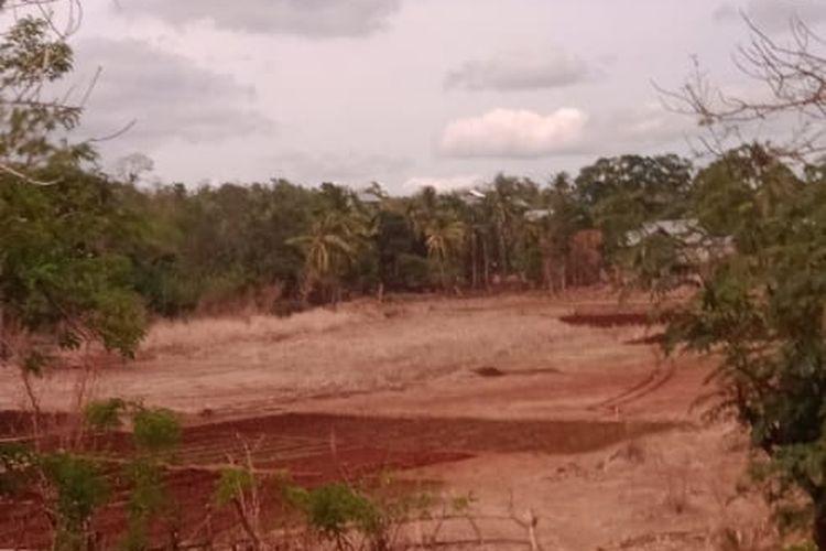 Danau di Kelurahan Sikumana, Kecamatan Maulafa, Kota Kupang, NTT yang mengering, Rabu (19/5/2021)
