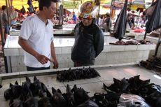 Virus Corona, Warga Diimbau Tak Makan Kelelawar dan Kurangi Interaksi dengan Hewan Liar