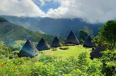 Desa Wae Rebo Flores, Kampung di Atas Awan yang Masih Tutup untuk Turis