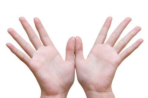 Misteri Tubuh Manusia, Kenapa Kita Memiliki 10 Jari Tangan dan Kaki?