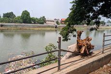 Pohon Tumbang Teronggok Dua Hari di Bantaran Kali Cisadane