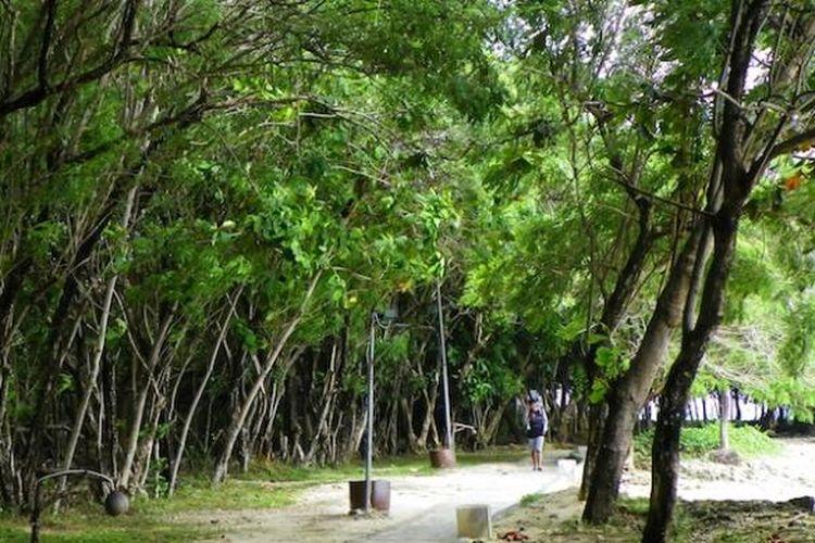 Jalur menuju Beach Club di sepanjang pinggir Pantai Tanjung Lesung, Jumat (13/2/2015). Tanjung Lesung Conservation Park sementara akan dibangun dekat Beach Club seluas satu hektar.