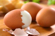 Tips Menyimpan Telur di Dalam Freezer