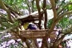 Virus Corona, Warga Desa di India Terpaksa Isolasi Diri di Atas Pohon
