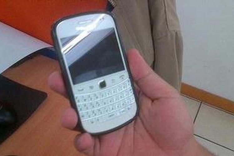 Ilustrasi Blackberry Dakota.