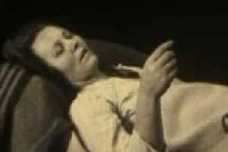 Penyakit tidur atau Encephalitis lethargica, menyerang otak , meninggalkan beberapa korban dalam kondisi seperti patung dan tidak bergerak.