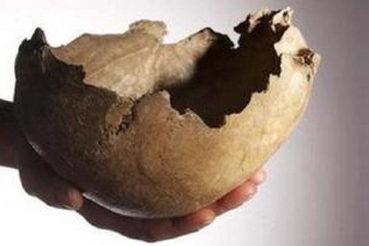 Bukti tengkorak manusia yang hancur disebabkan karena ritual kuno.