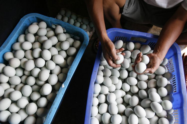 Pengusaha telur asin di Limbangan Wetan, Kabupaten Brebes, Jawa Tengah, Jumat (19/8), mulai menambah produksi untuk mengantisipasi tingginya permintaan jelang Lebaran. Pada hari biasa, pengusaha bisa menjual 4.000-5.000 butir per hari, sementara selama libur Lebaran akan meningkat lima kali lipat. Selain memasok pasar lokal, mereka juga memasok kebutuhan warga di Jakarta.