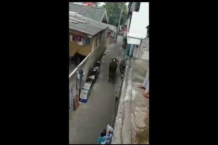 Tangkapan layar sebuah video yang menampakkan sapi kurban lepas kendali di JalanKebonBawangII, Kebon Bawang, TanjungPriok, JakartaUtara, Senin (19/7/2021) sore.