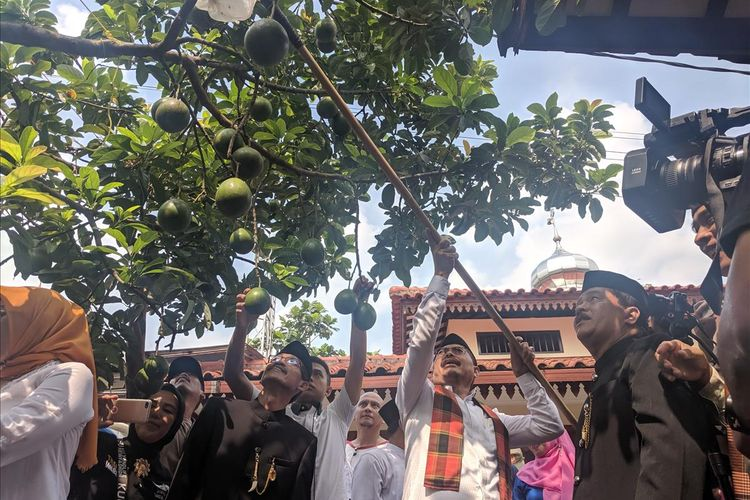 Walikota Jakarta Selatan, Marullah Matali Ngangget Buah Alpukat Cipedak