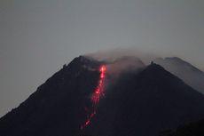 Ini Link untuk Pantau Aktivitas Gunung Merapi