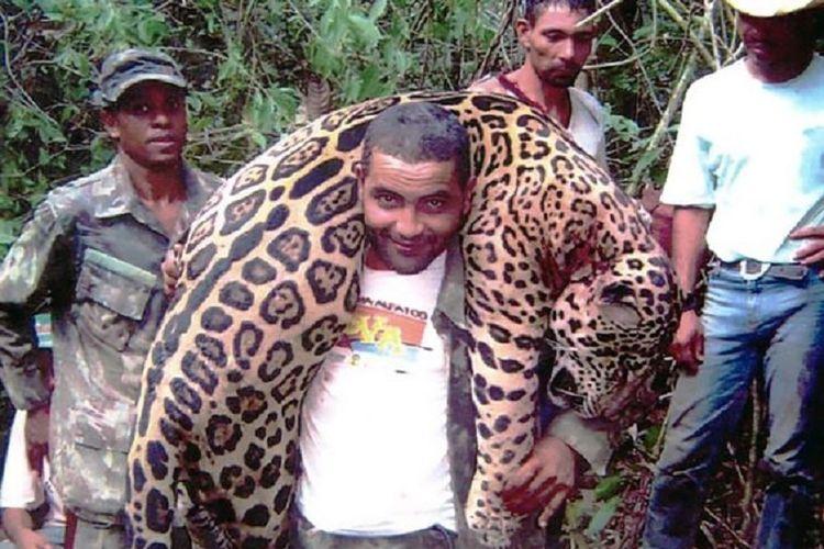 Pemburu liar jaguar yang ditangkap kepolisian Brasil.