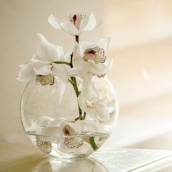Ilustrasi vas bunga kaca.