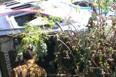 Bus Masuk Jurang, 60 Penumpang Terluka