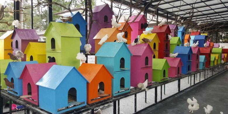 Rabbit Town, Bandung