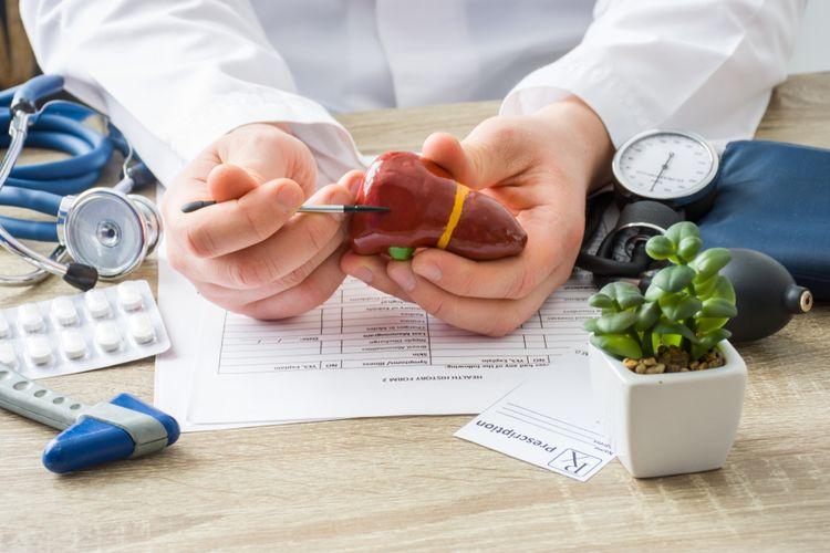 Ilustrasi hati, penyakit hepatitis