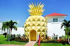 Rumah Nanas Spongebob Ada di Dunia Nyata, Yuk Intip!