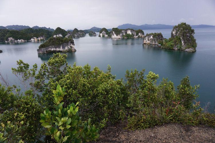 Pemandangan dari atas Bukit Raja di Teluk Kabui, Raja Ampat, Papua Barat.