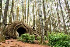 Yogyakarta Tambah 4 Tempat Wisata yang Ikut Uji Coba Pembukaan, Ada Pinus Pengger