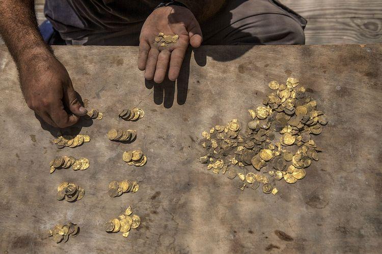Arkeolog Israel, Shahar Krispin, menghitung koin emas yang terkubur dalam bejana tembikar yang ditemukan di sebuah situs arkeologi di Israel pada Selasa pekan lalu (18/8/2020). Arkeolog Israel telah mengumumkan penemuan harta karun koin emas dari periode kehalifahan Islam periode awal di Yavne. Sebanyak 425 keping koin emas ditemukan, sebagian besar berasal dari Dinasti Abbasiyah sekitar 1.100 tahun lalu.