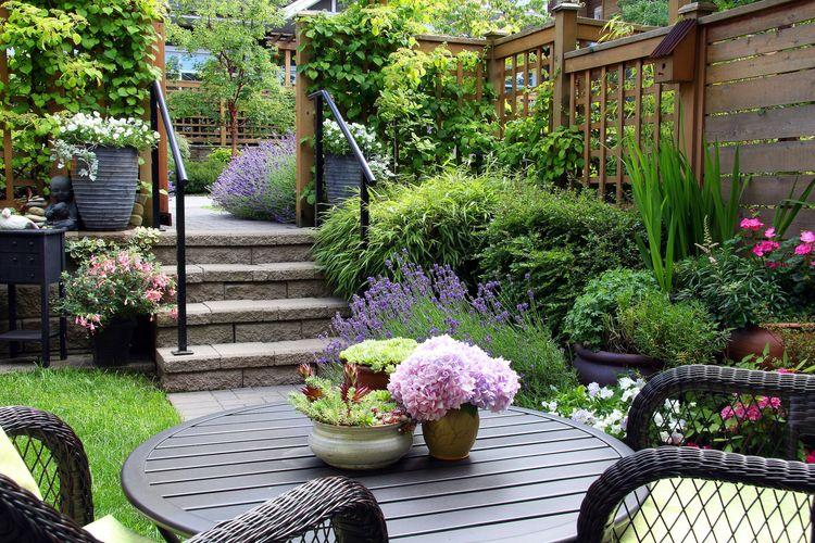 Ilustrasi taman rumah.