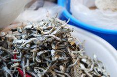 Cara Simpan Ikan Teri Kering dan Ikan Teri Basah, Beda Metodenya