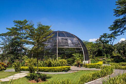 Kebun Raya Indrokilo Boyolali Buka Lagi, Simak Syarat Kunjungannya