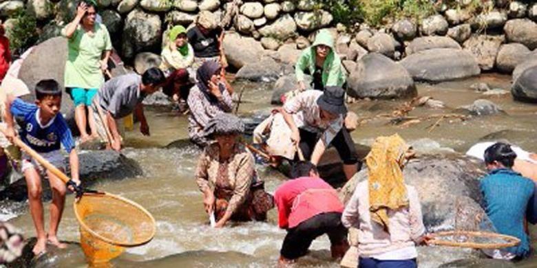 Warga Kampung Naga di Kecamatan Salawu, Kabupaten Tasikmalaya, Jawa Barat, melakukan upacara adat marak di Sungai Ciwulan beberapa waktu lalu. Marak adalah kearifan lokal warga Kampung Naga dalam menjaga kelestarian dan kebersihan Sungai Ciwulan.