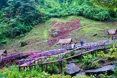 6 Tips Berkunjung ke Srambang Park Ngawi ketika Libur Tahun Baru