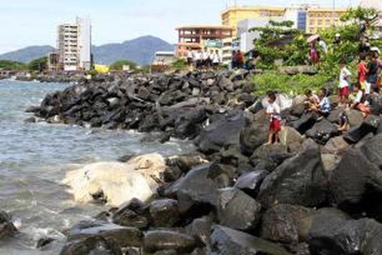 bangkai seekor paus terdampar di tepi pantai Manado dan menjadi tontonan warga.
