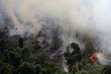 Presiden Perancis Desak Kebakaran Hutan Amazon Jadi Isu Utama KTT G7