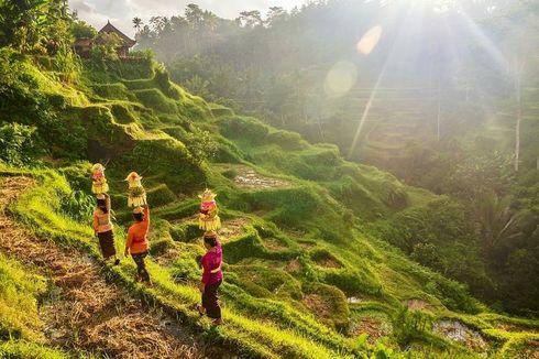 Bali Bukan Satu-satunya Surga Wisata Indonesia, Jelajahi Juga 5 Surga Destinasi Super Prioritas Ini